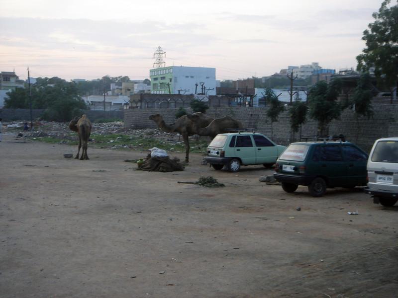 Hyderabad-2005-021.JPG
