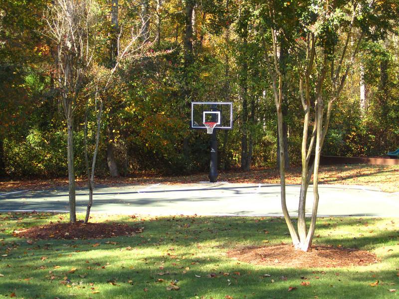 Fox Creek Cumming GA Homes (18).JPG