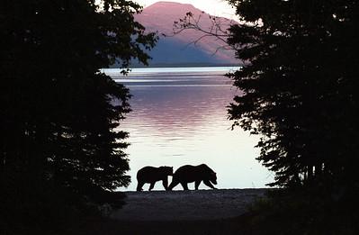 Alaska and Western Canada