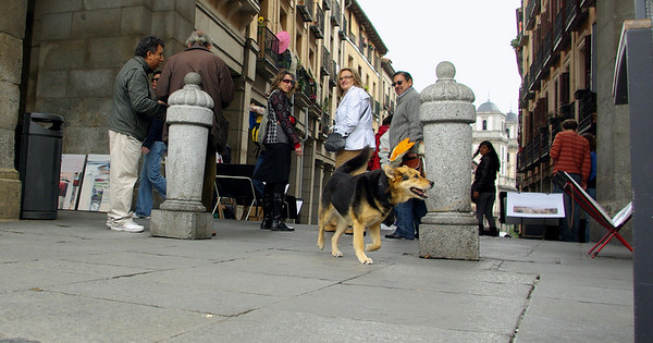Maddie Plaza Mayor Madrid
