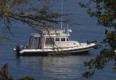 Conepatus the Boat