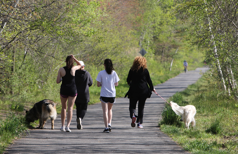 From left,  Katherine Shea, 16, and her mother Cheryl Shea of Groton, and their longhaired German shepherd, Holly, and their friends Caroline Keegan, 15, and her mother Nancy Keegan of Groton, with their European retriever, Bella, head out for a walk on the Nashua River Rail Trail in Groton. (SUN/Julia Malakie)