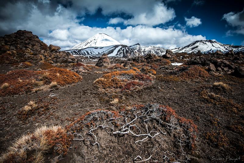Tongariro.jpg