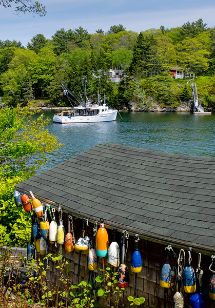 Lobster Cove, Boothbay Harbor, Maine (70439)