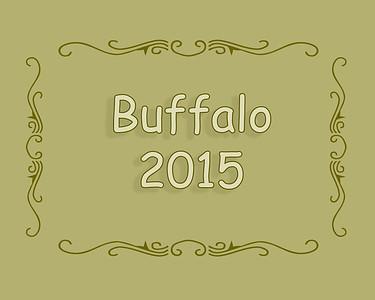 Buffalo Rodeo 2015