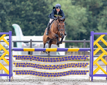2018-07-21 Aston Le Walls with The Gaitpost