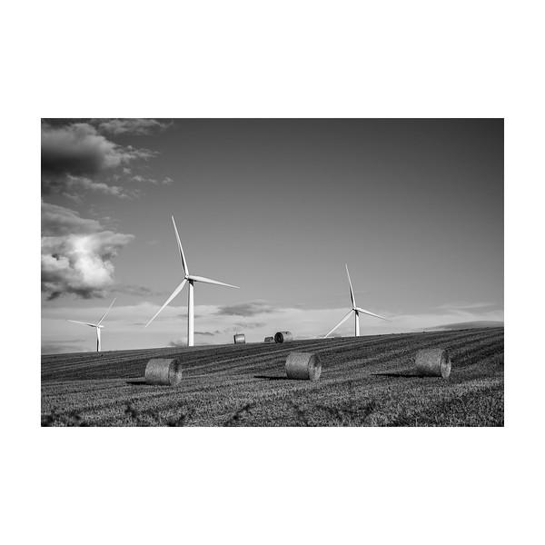 221_Windfarm_10x10.jpg