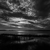 SunsetBackBayNationalWildlifeRefuge-035_BW