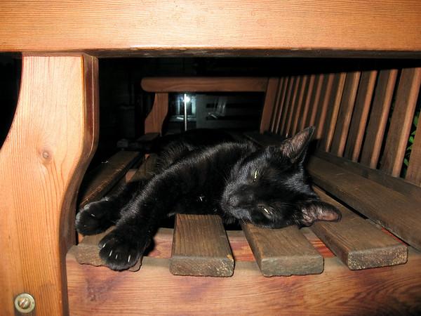 july 9th 2007 - sleeping on the job