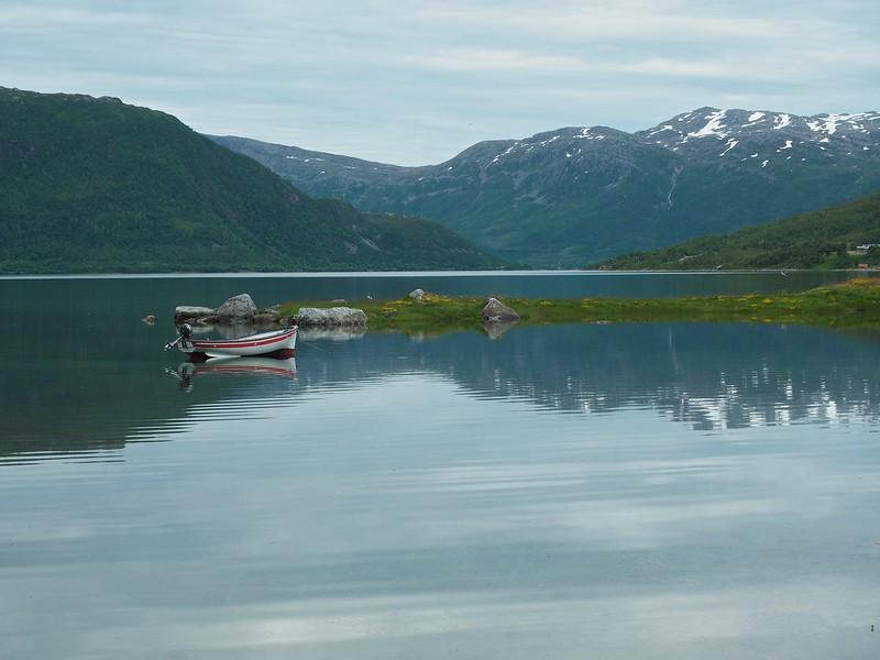 Gullesfjordbotn 08-07-17 (77b).jpg