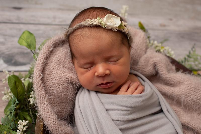 Baby Olivia Grace-2.jpg