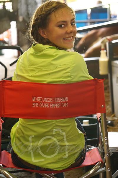 2016 Ozark Empire Fair Red Angus