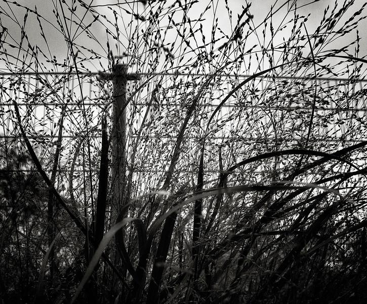 fence-cross.jpg