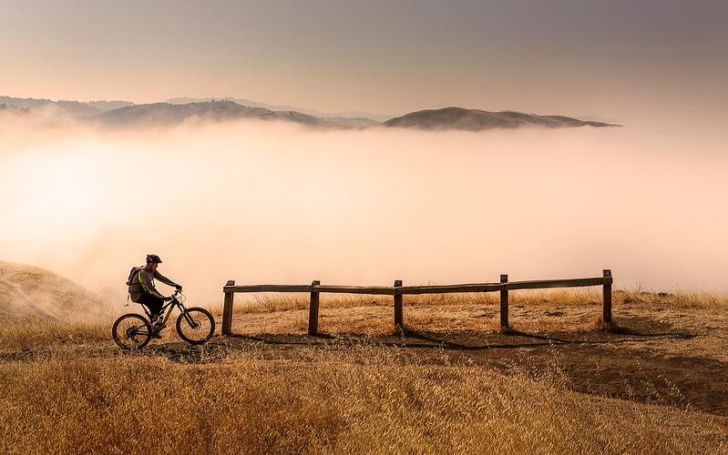 Cyclist-uptop-web.jpg