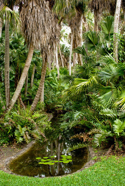 McKee Botanical Garden043005.jpg