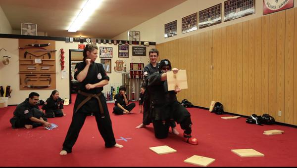 2011-06-25 Brown Belt Test Videos