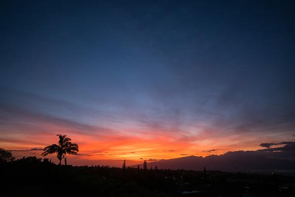 1.24.20-03.03.20_More Maui 2020