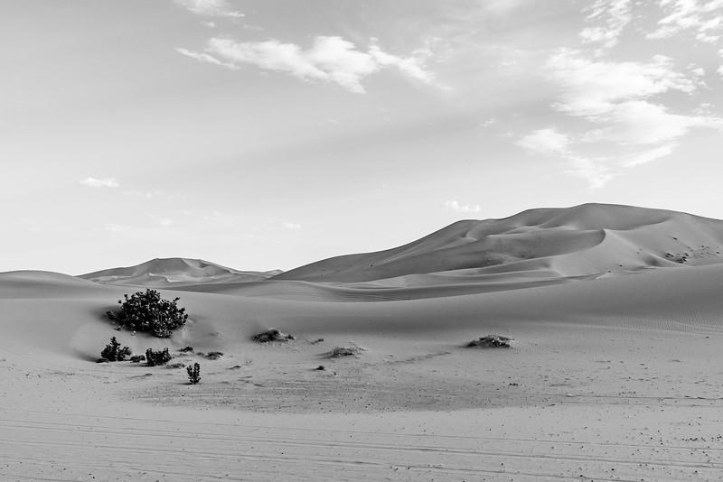 Marruecos-_MM11224.jpg