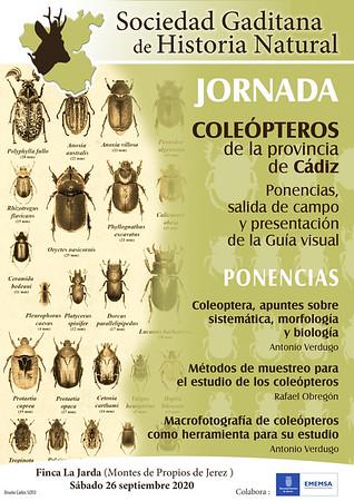 Jornada Coleópteros