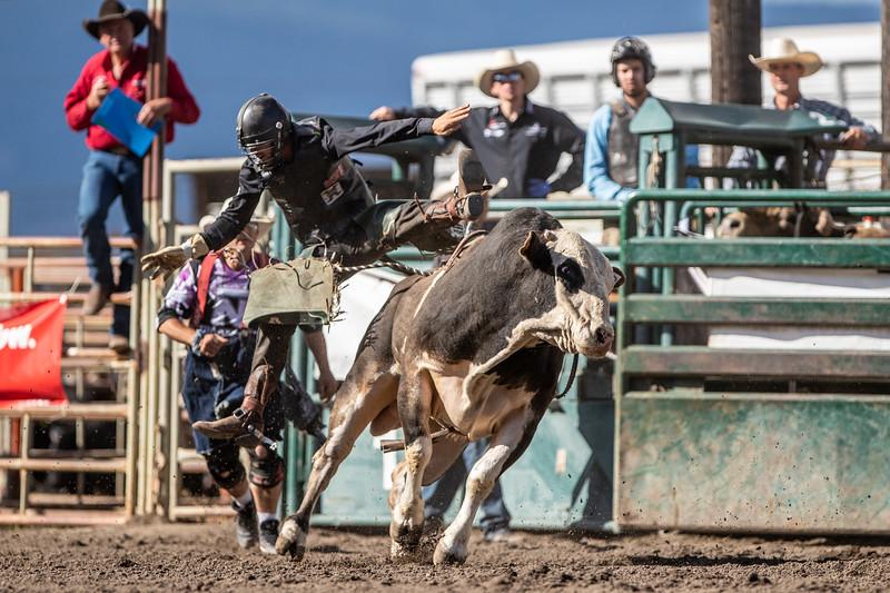 2019 Rodeo E (292 of 512).jpg