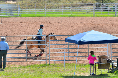 2013 UPHA Horse shows