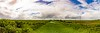 Suriname-3247-Pano