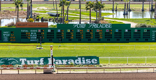 Turf Paradise Racing in Phoenix  4 March 2020