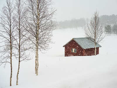 Sweden - rural areas up North