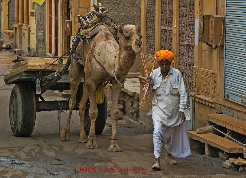 INDIA2010-0208A-371A.jpg