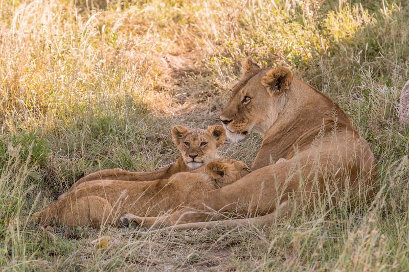 Tanzania_Feb_2018-581.jpg