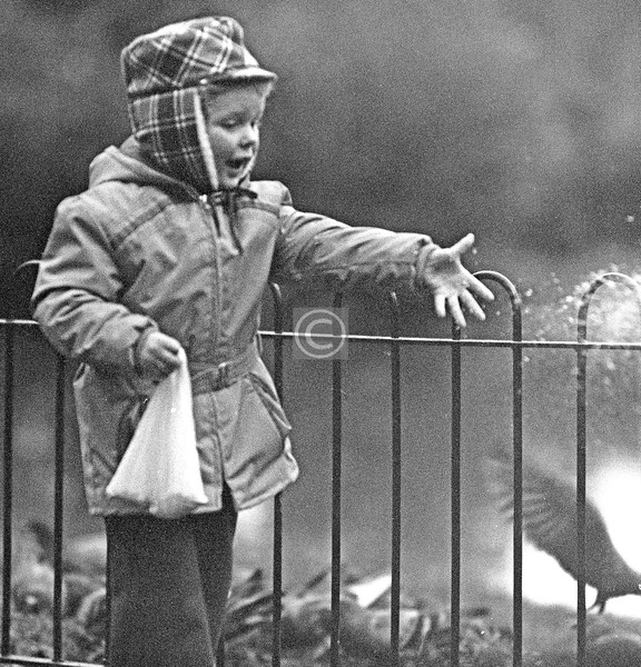 Things To Do In the Queen's Park, no.11 - Feed the pigeons. It was almost dark when I took this, and the image quality is ropey. [1970s]