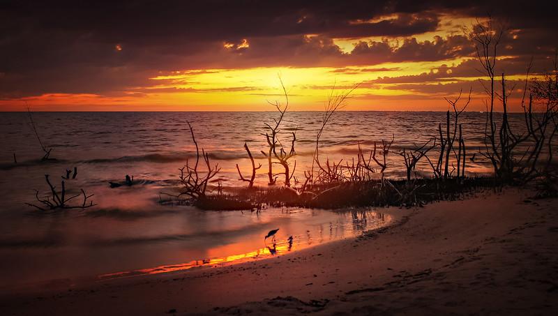 Sunrise and Sunset (85).jpg