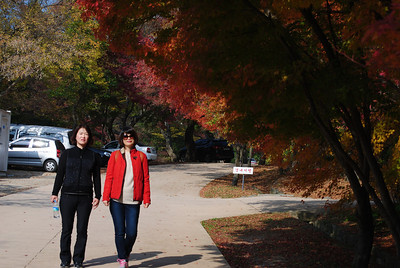 Japan and Korea trip 2013