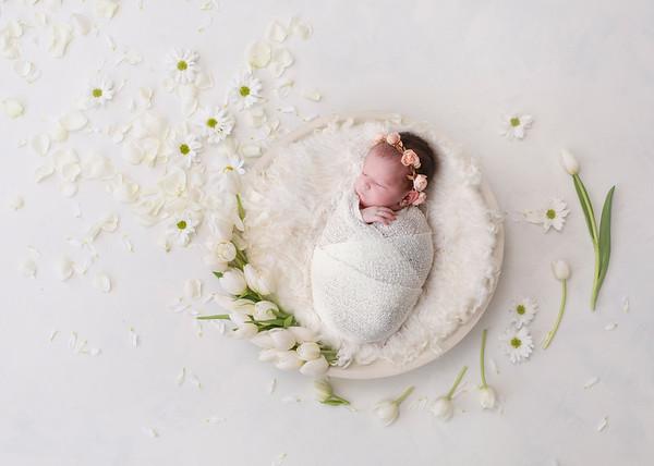 Shaindy Lebowitz Newborn