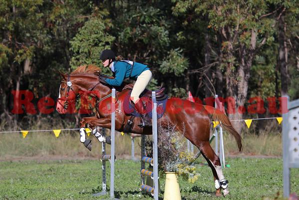 2010 06 20 Log Fence ODE Showjumping C Grade