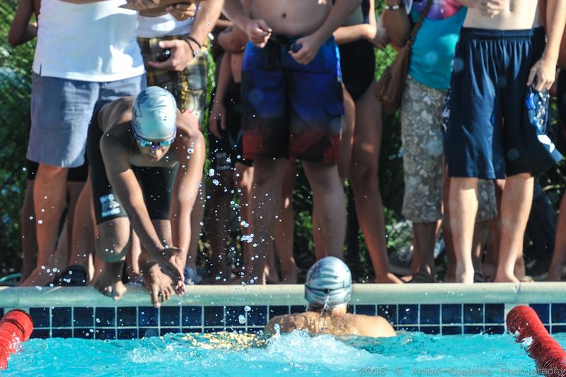 2016-06-29_HAC_SwimMeet_v_Dolphins@SkylineDE_016.jpg
