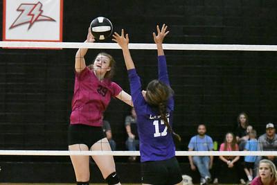 Volleyball - LHS JV 2017 - Pinkfest Camdenton