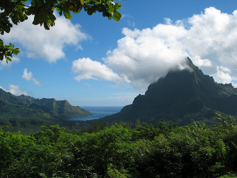 View of Opunohu Bay from the lookout on Moorea, French Polynesia