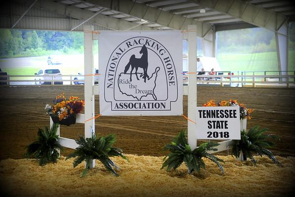 TENN STATE NRHA  CHAMPIONSHIP HORSE SHOW
