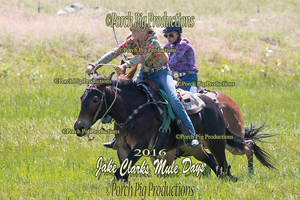 Mule Race and Balloon Shooting Jake Clarks Mule Days 2016 Rodeo