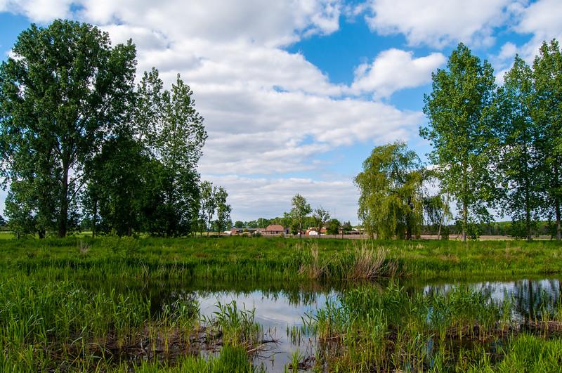 GrensPark Kempen~Broek, omgeving Stramprooierbroek & St.-Maartensheide 51.jpg