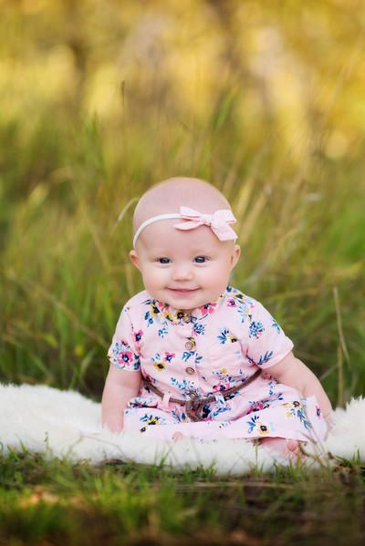 2017 | Kerrigan, 5 months old