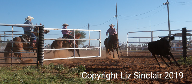 RCSP 3&1 Ranch Rodeo