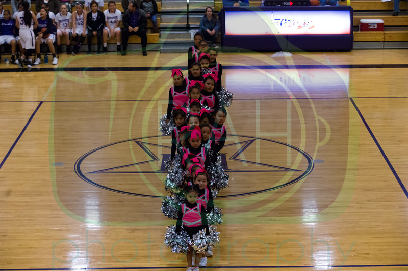 Tigerettes Dance Performance 2-18-17