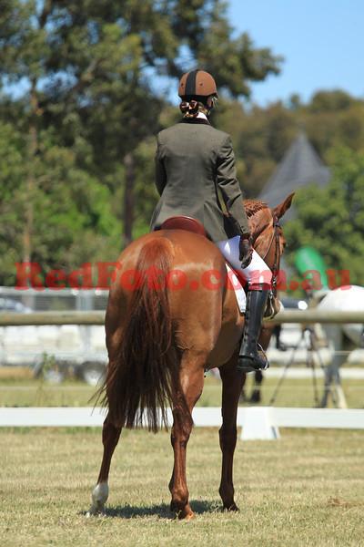 2012 10 20 Swan River Horse Trials Brookleigh CIC Dressage Arenas 2 3 4 8-30 till 10-45