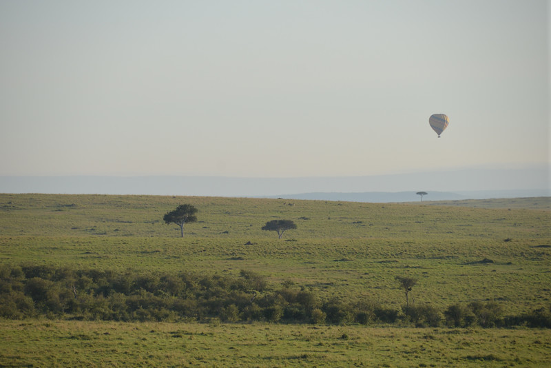 East Africa Safari 207.jpg