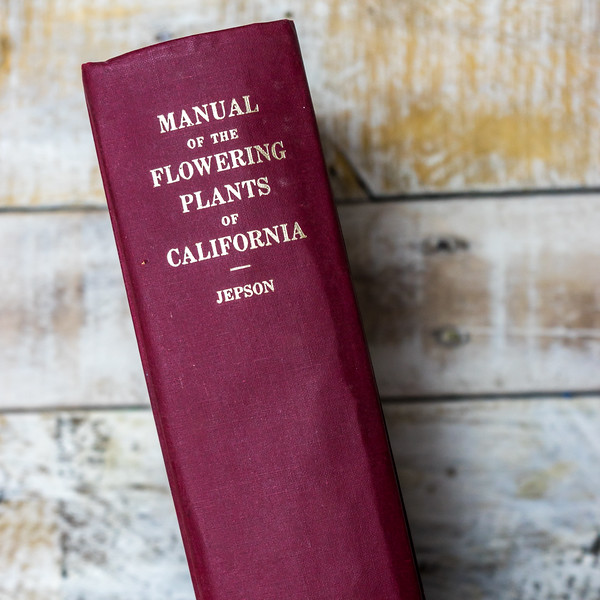 Manual of the Flowering Plants of California— Jepson