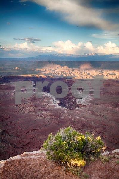 Canyonlands, Buck Canyon  6280_HDR.jpg