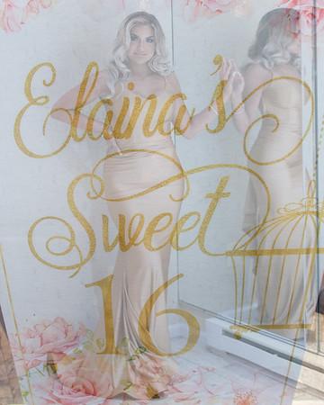 Elaina's Sweet 16