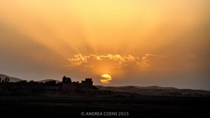 AndreaCoens-127.jpg